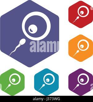 Donor sperm icons set hexagon - Stock Photo