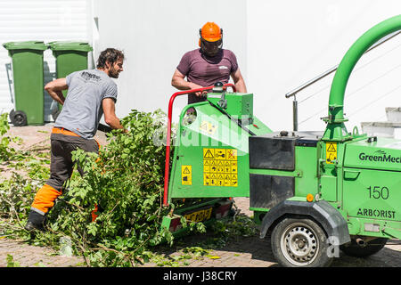 a greenmech arborist 150 wood chipper fitted to the back of a truck rh alamy com