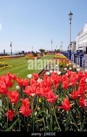 Eastbourne Sussex, seafront flower gardens flowers garden ...