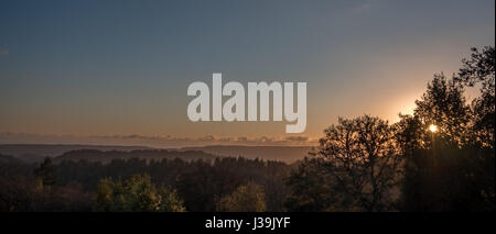 Sunset Behind Tree with Forest and Mountains in the Background - Stock Photo