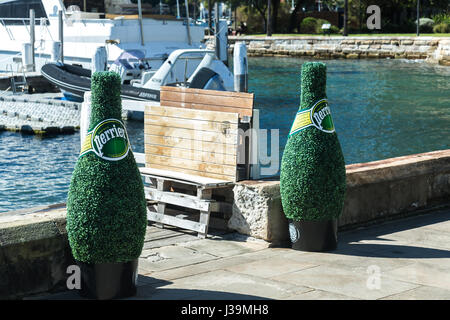 Giant perrier water bottles made of bush leaves at Elizabeth Bay, Sydney. - Stock Photo