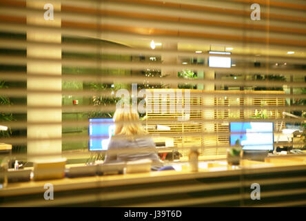 Woman backside working at the computer in the office seen from outside a venetian curtain - Stock Photo