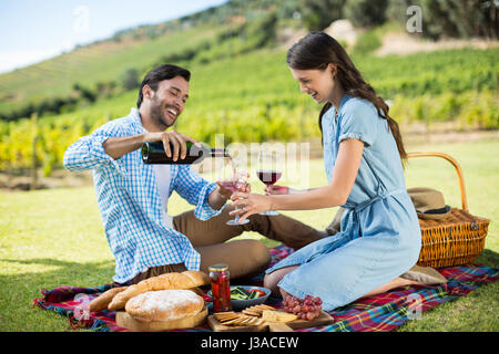 Happy man pouring red wine in glasses at vineyard Stock Photo