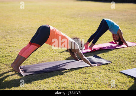 Girl practicing downward facing dog positiong with female trainer at park - Stock Photo