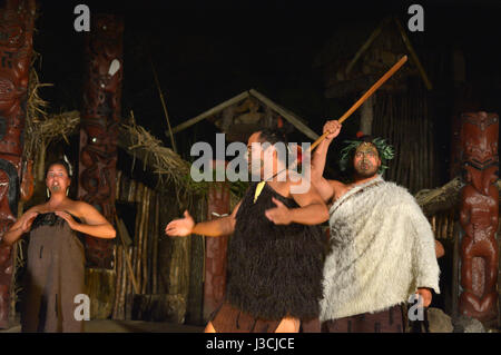 ROTORUA, NZL - APR 25 2017:Maori people sing and dance. Maori are the indigenous people of New Zealand that migrated - Stock Photo
