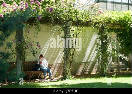 Paris, Parc de Bercy, 128 Quai de Bercy, 75012 Paris, Jardins de la Memoire - Stock Photo