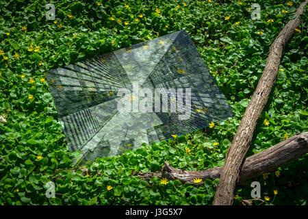 Abstract Deforestation Concept Showing City Reflection In A Forest - Stock Photo