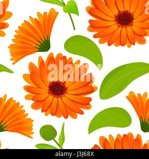 Calendula seamless pattern. Flowers with leaves isolated on white - Stock Photo