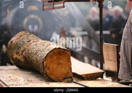 A traction engine drives an old fashioned portable sawmill table as it cuts timber from a tree trunk. - Stock Photo