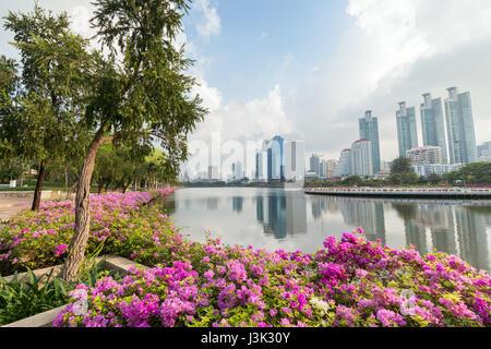 Blooming flowerbeds at the Benjakiti (Benjakitti) Park and modern skyscrapers in Bangkok, Thailand. - Stock Photo