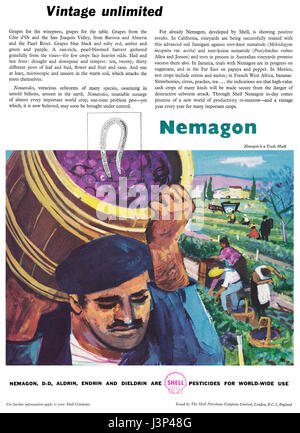 1958 British advertisement for Nemagon, a pesticide made by Shell. First synthesised in 1955 as a soil fumigant, - Stock Photo