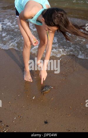 Girl trying to move crab on ocean shore - Stock Photo