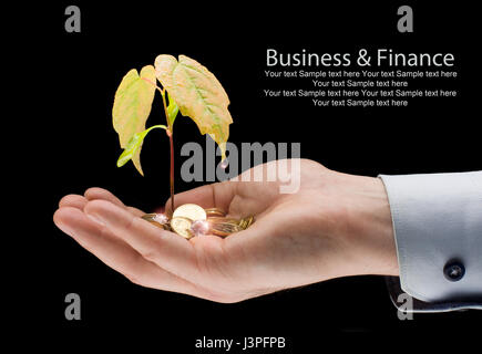 Money and plant with hand - finance new business.  Growing money on the palm - profit - Stock Photo