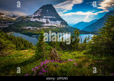 Hidden Lake is located in Glacier National Park, in the U. S. state of Montana. Hidden Lake is surrounded by numerous - Stock Photo