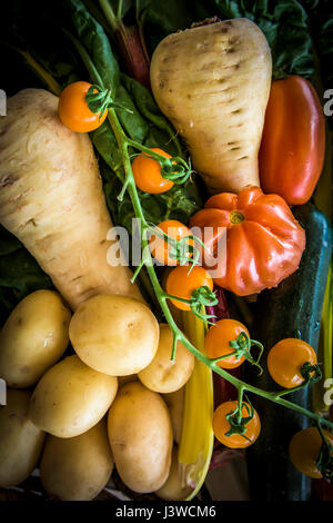 Various fresh vegetables Food Source of nutrition Ingredients Tomatoes Parsnips Potatoes Ingredients for cooking - Stock Photo