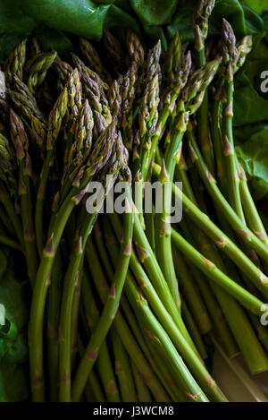 Asparagus Asparagus officinalis Food Edible Tender Spring vegetable Delicacy Asparagus shoots Nutritious Appetizer - Stock Photo