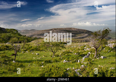 Looking towards Slieve Roe, a Carboniferous Limestone mountain in the Burren, from Mullaghmore, County Clare, Ireland - Stock Photo