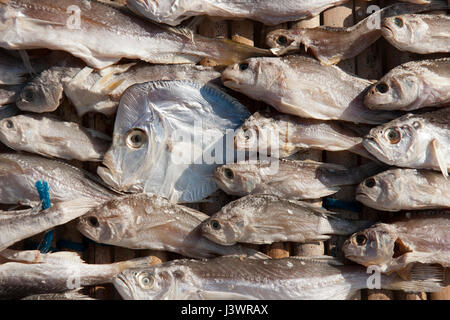 dry fish for sale on a market  in Brazil - Stock Photo