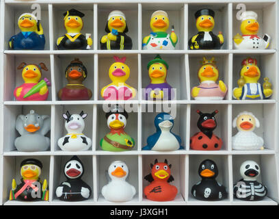 toy plastic ducks dressed for different careers - Stock Photo