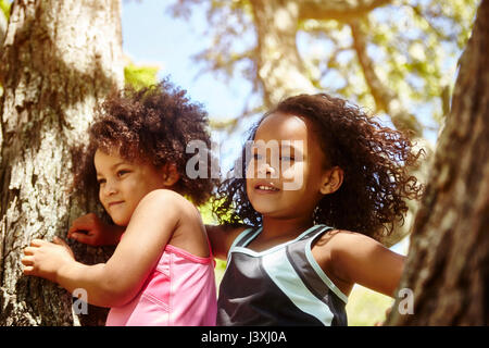 Two young sisters playing on tree