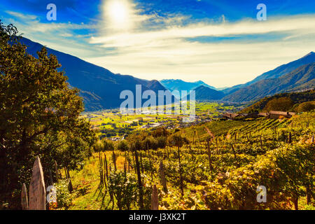 View from vineyards towards valley and mountain range - Stock Photo