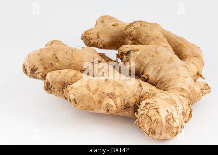 Ginger (Zingiber officinale) isolated in white background - Stock Photo