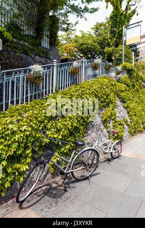 Two bicycles parking on footpath beside stone wall covered by creeping ivy - Stock Photo