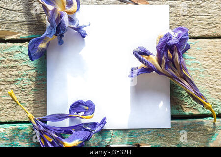 White paper on the wooden background with dried flowers Iris - Stock Photo