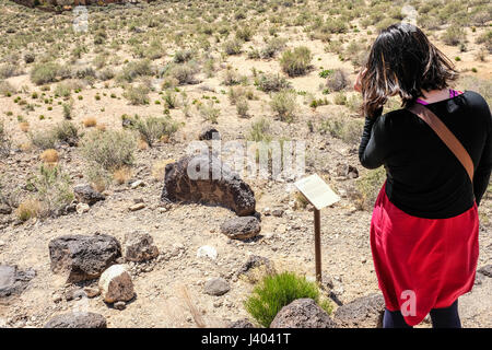 A woman looking at petroglyphs at Petroglyph National Monument, New Mexico, United States - Stock Photo