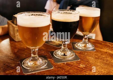 Assorted Beers in a Table Ready for Tasting - Stock Photo