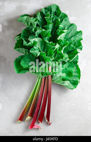 Fresh organic rhubarb stems with leaves on grey concrete stone background - Stock Photo