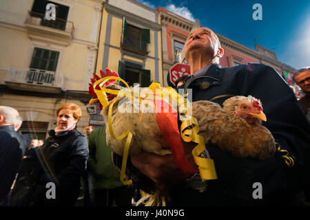 Madonna of the Hens, popular festival of the town of Pagani, Salerno, Italy. - Stock Photo