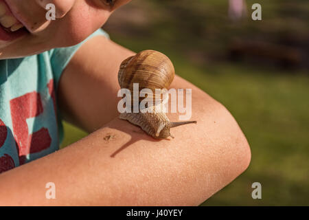Young girl showing a snail on her arm - Stock Photo