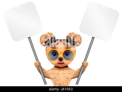 Funny puppy with sunglasses holding empty banner, isolated on white. Connection and advertising concept. Realistic - Stock Photo