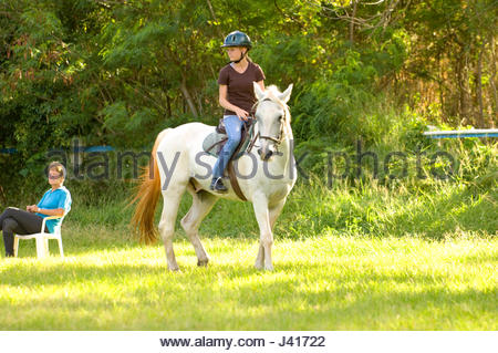 Teenage girl with blonde hair and freckles wearing a helmet riding a white horse in a grassy paddock. Koko Head - Stock Photo