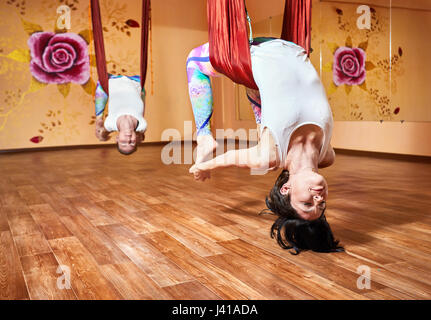 two young woman doing antigravity yoga in hammock at wellness studio with rose on the wall dhanurasana yoga pose in hammock stock photo royalty free image      rh   alamy