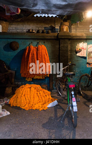 Strands of marigolds ready for sale. Located in Kolkata, the market is held every morning: it takes place near the - Stock Photo