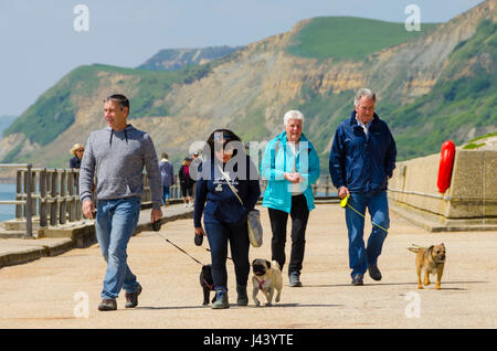 West Bay, Dorset, UK.  9th May 2017.  UK Weather.  Dog walkers strolling along the promenade on an afternoon of - Stock Photo
