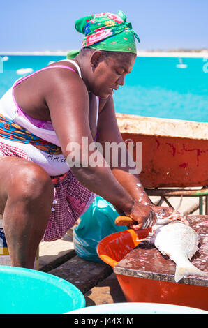 CAPE VERDE SAL local woman scaling and gutting a freshly caught fish on the wooden pier in Santa Maria Sal Island - Stock Photo