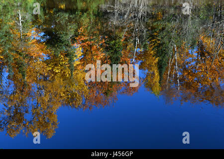 Trees full of fall color reflecting in a body of water. - Stock Photo