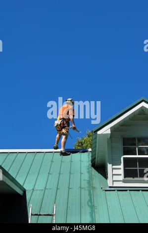 Young male makes repairs to his metal roof.  He is standing near the ridge holding a caulking gun.  A belt and rope - Stock Photo