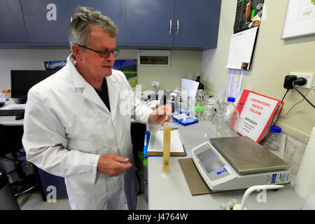 Picture by Tim Cuff - 26 October 2016 - Dr Ron Beatson in the experimental brewery at Plant and Food, Motueka, Nelson, - Stock Photo
