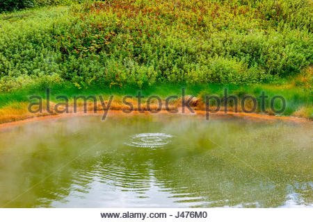 Volcanic pond boiling in Valley of geyser - Stock Photo