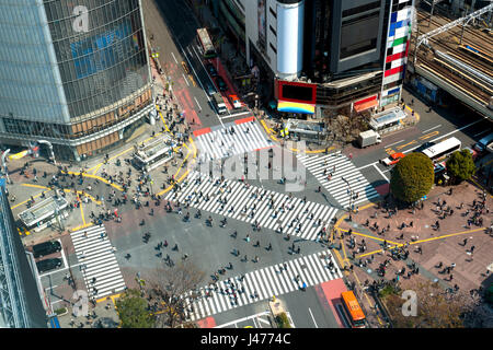 Tokyo, Japan view of Shibuya Crossing, one of the busiest crosswalks in Tokyo, Japan. - Stock Photo