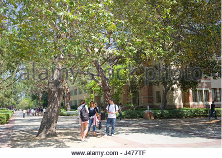 UCLA campus, Westwood, Los Angeles, California, USA - Stock Photo
