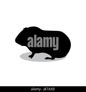 Guinea pig pet rodent black silhouette animal - Stock Photo
