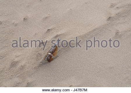 Bullet in the sand rusted old - Stock Photo
