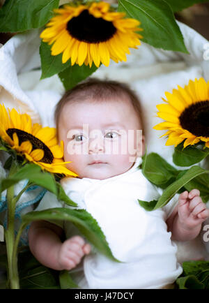 Cute baby with red hair wearing a white shirt smiling with yellow and black sunflowers - Stock Photo
