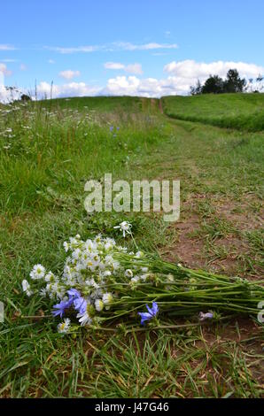 Good summer day at the village.  Blue sky. Green grass. Road in the field and wild flowers which someone has left - Stock Photo