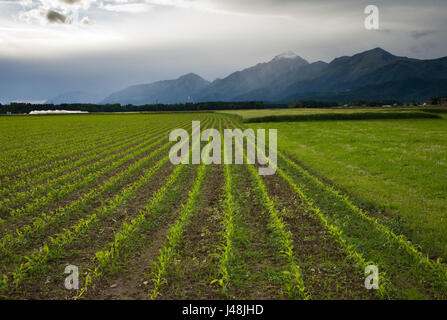 Storm clouds clearing across the distant Storzic mountain of the Kamnik Alps, seen across the fields in Brnik, Slovenia. - Stock Photo